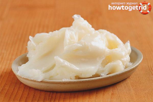 барсучий жир его полезные свойства как принимать внутрь или втирать
