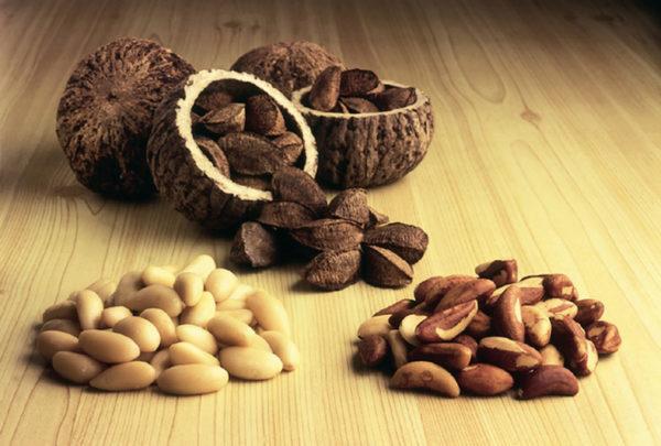 бразильский орех полезные свойства для женщин и мужчин