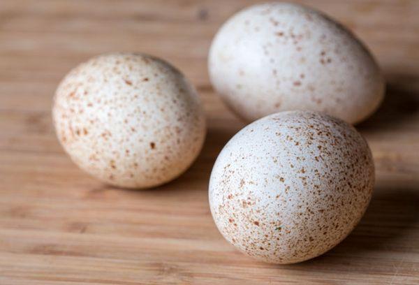 цесариные яйца польза и вред как принимать