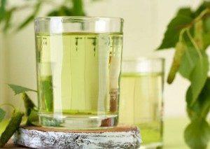 чай из листьев березы польза и вред
