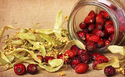 чай из шиповника полезные свойства и противопоказания для беременных