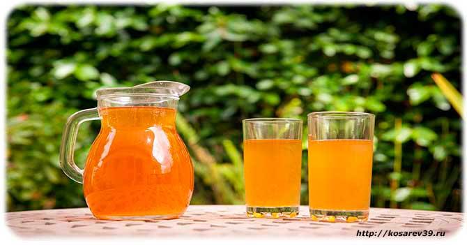 чайный гриб полезные свойства и противопоказания для детей