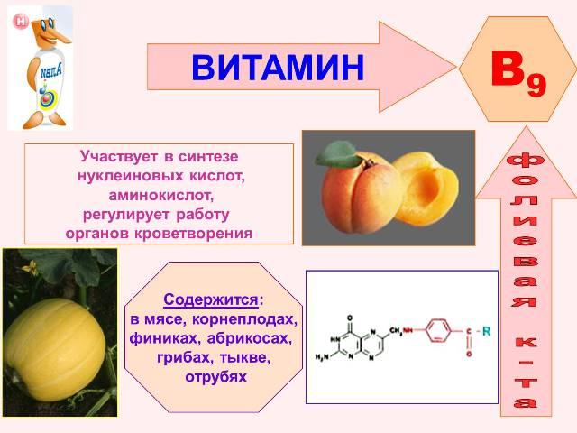 чем полезна фолиевая кислота для женщин до беременности