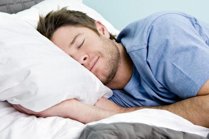 дневной сон взрослого польза и вред