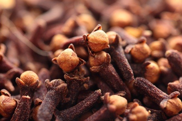 гвоздика пряность полезные свойства и противопоказания при диабете