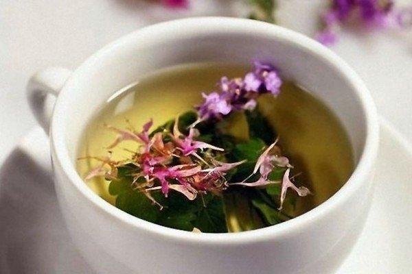 иван чай для беременных польза и вред