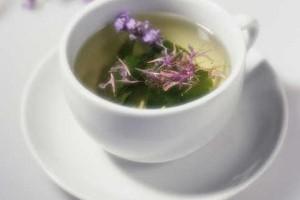 иван чай как собирать и сушить полезные свойства для мужчин