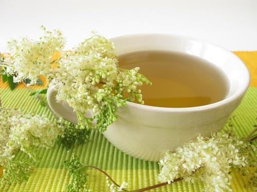иван чай с лабазником полезные свойства и противопоказания