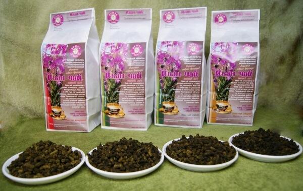 иван чай зеленый листовой полезные свойства и противопоказания