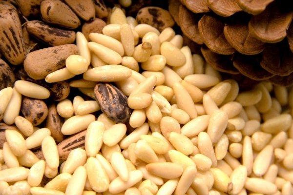кедровые орешки при беременности польза или вред
