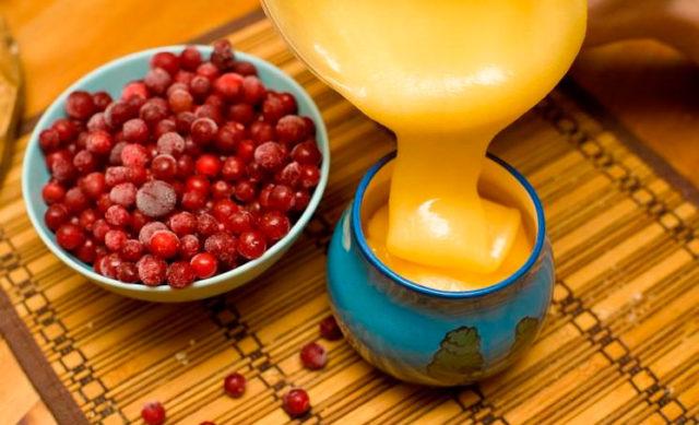 клюква с медом и чесноком полезные свойства и противопоказания