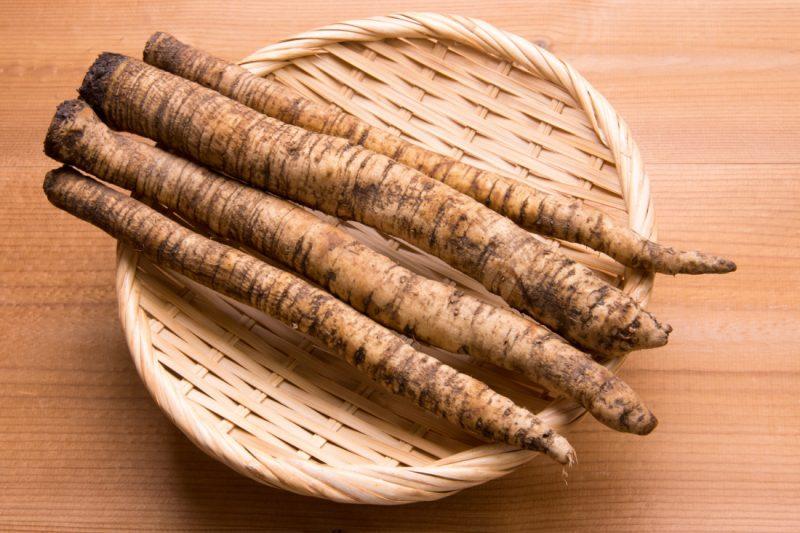 корень лопуха полезные свойства и противопоказания для женщин