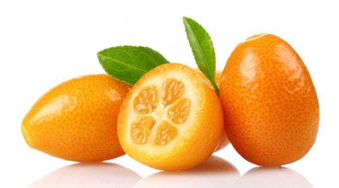 кумкват сушеный полезные свойства и противопоказания калорийность на 100 грамм