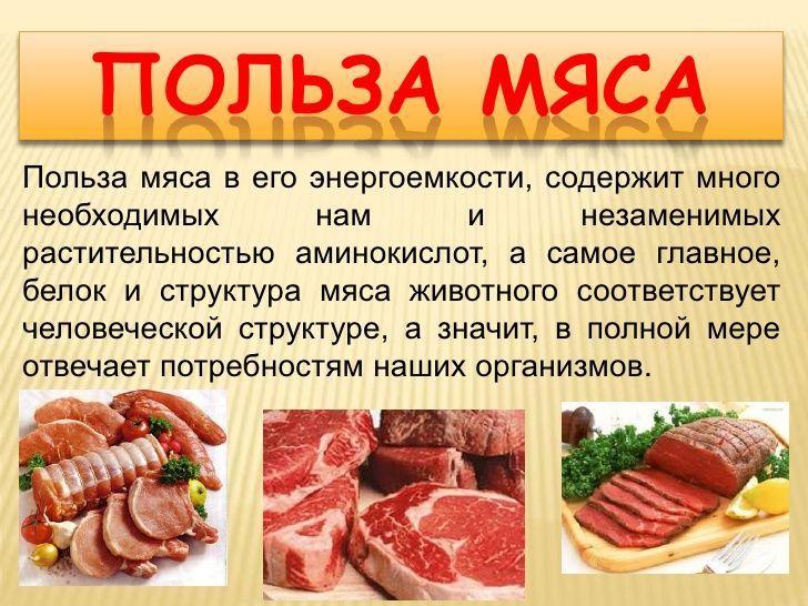 мясо индейки польза и вред рецепты
