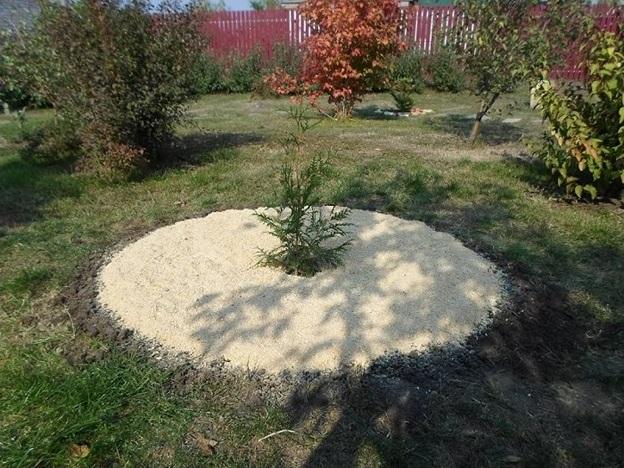 опилки в почву вред или польза