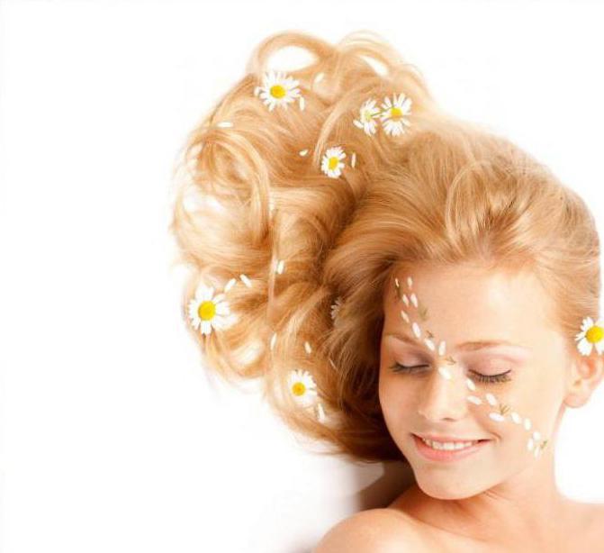 отвар ромашки для волос польза и вред
