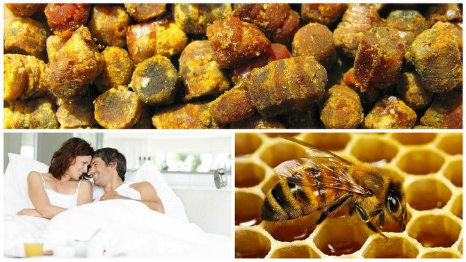 перга пчелиная полезные свойства как принимать для повышения потенции