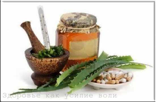 полезные свойства алоэ вера применение сока и рецептов из алоэ