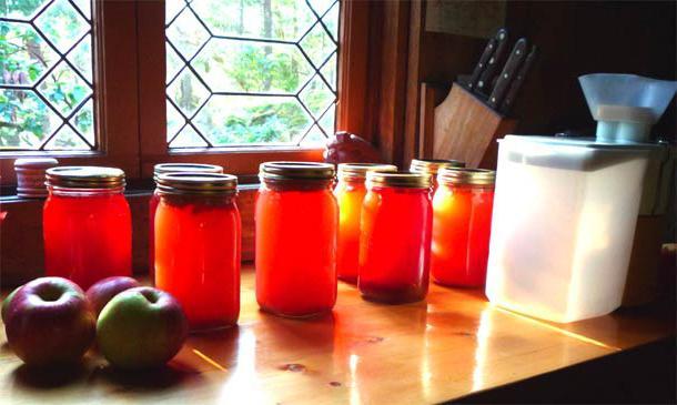 полезные свойства яблочного сока из соковыжималки в домашних условиях
