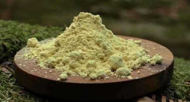 пыльца сосны новая эра полезные свойства как принимать