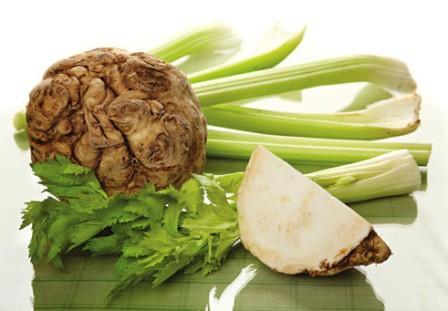 сельдерей полезные свойства и противопоказания сок стебли корень