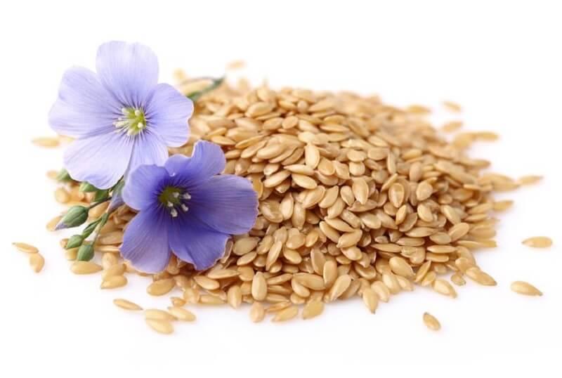 семена белого льна польза и вред