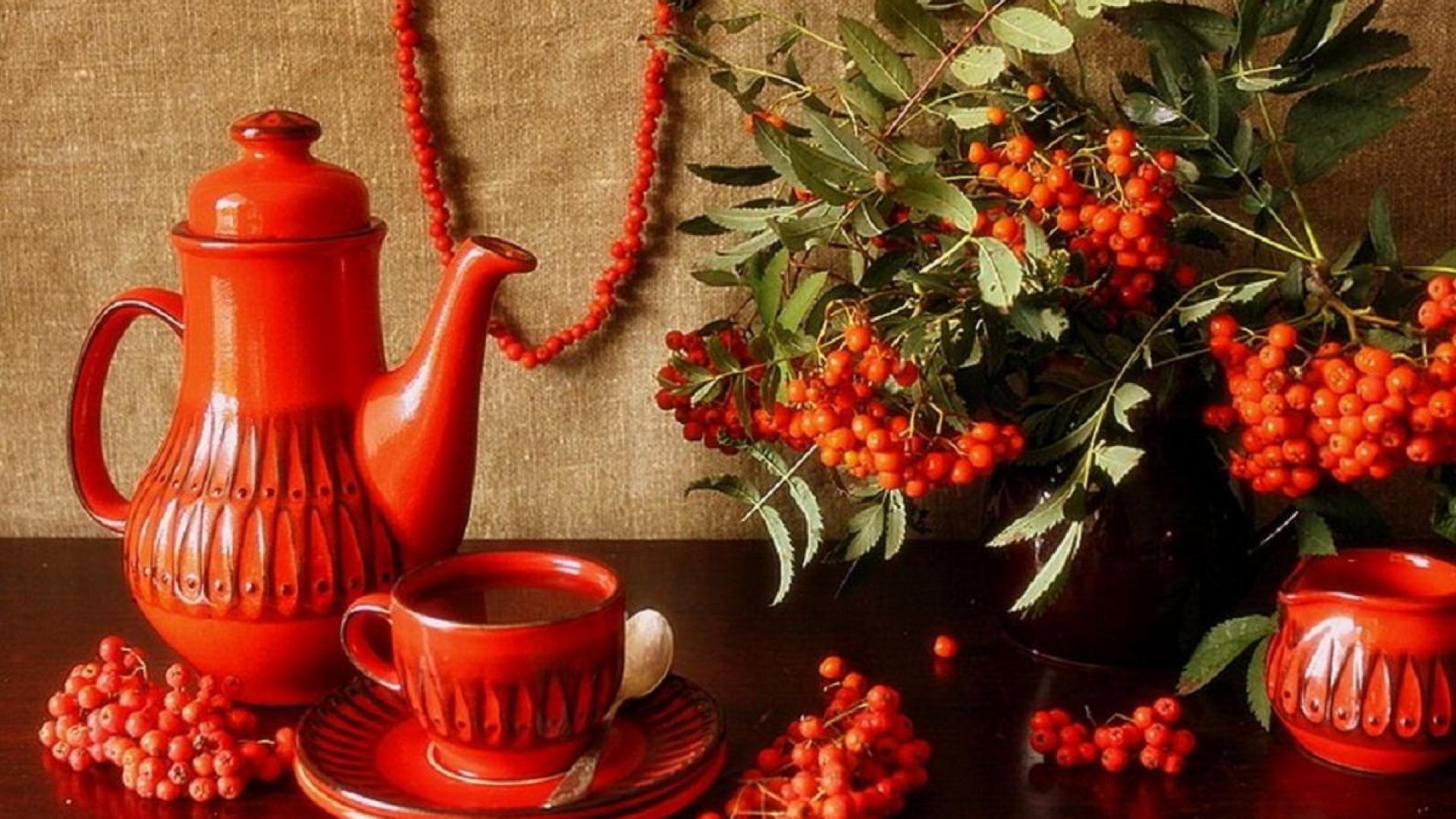 варенье из красной рябины полезные свойства и противопоказания