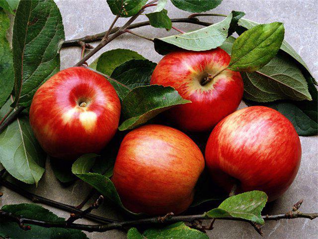 яблоки во время беременности польза и вред