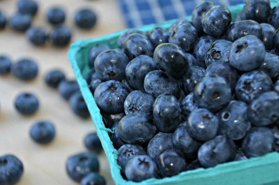 ягода черника полезные свойства и противопоказания и хранение