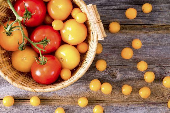 зеленые помидоры вред польза и вред