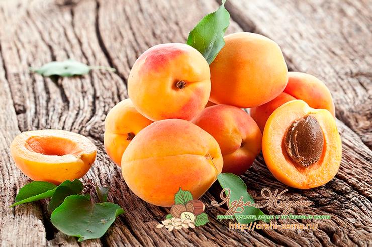 зерна абрикосовых косточек польза и вред