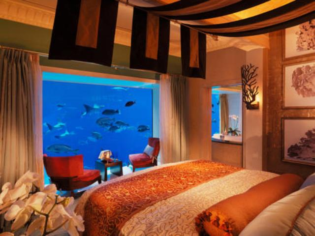 аквариум в спальне вред или польза