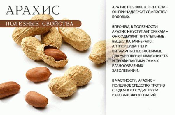 арахис в кунжуте вред и польза