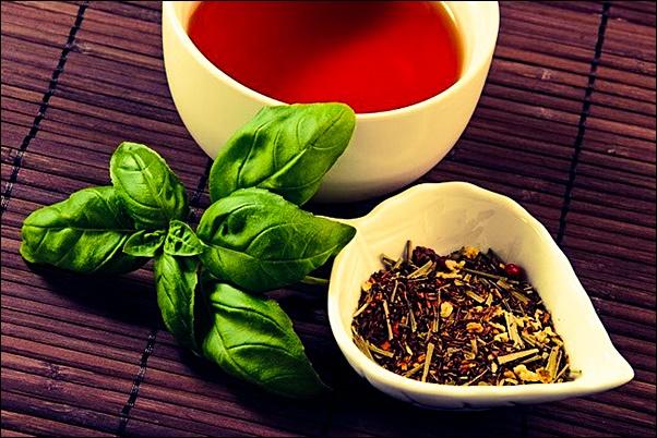 базилик в чай польза и вред