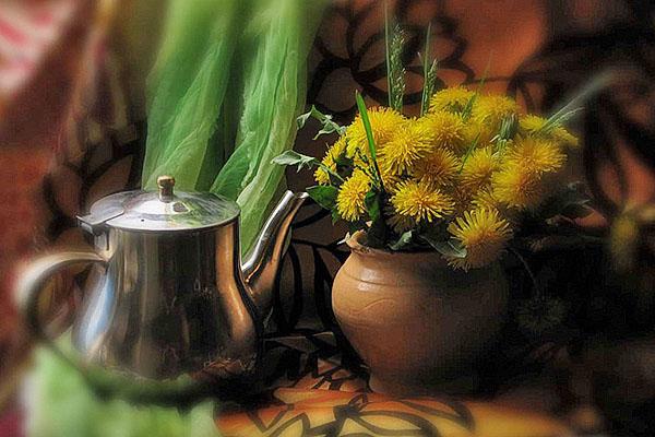 чай из одуванчика польза и вред