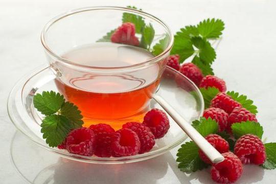 чай с малиной вред и польза