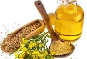 горчичное масло полезные свойства и противопоказания для женщин