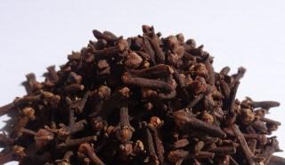 гвоздика пряность полезные свойства и противопоказания при панкреатите