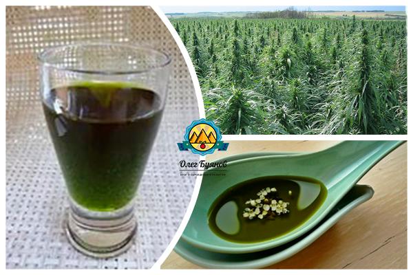 конопляное масло полезные свойства и противопоказания при онкологии