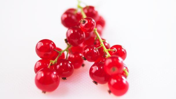 красная смородина полезные свойства и противопоказания при давлении