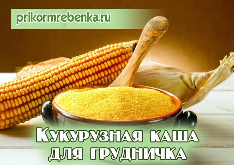 кукурузная каша грудничку польза и вред