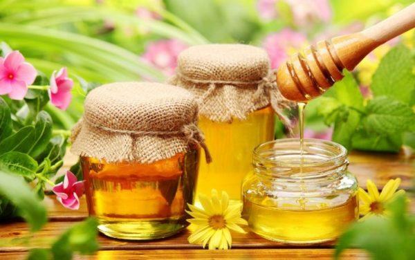 мед для желудка польза и вред