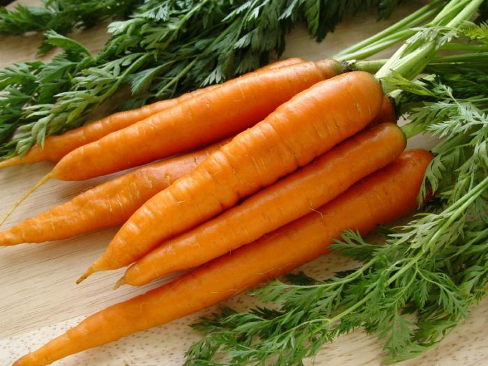 морковка польза и вред для здоровья