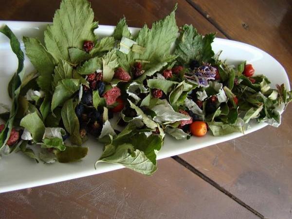 отвар листьев смородины польза и вред