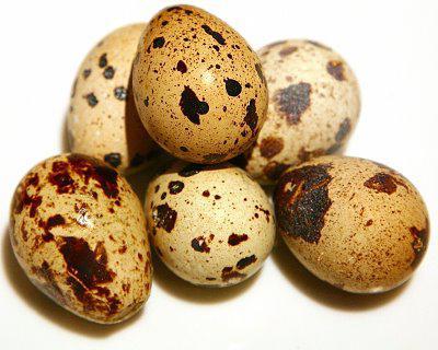 перепелиные яйца натощак польза и вред
