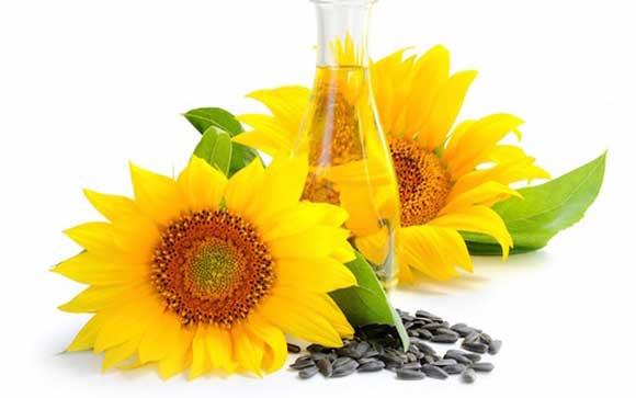 подсолнечное масло натощак вред и польза