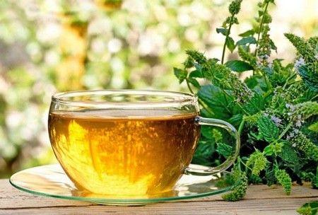 польза и вред чабреца в чае