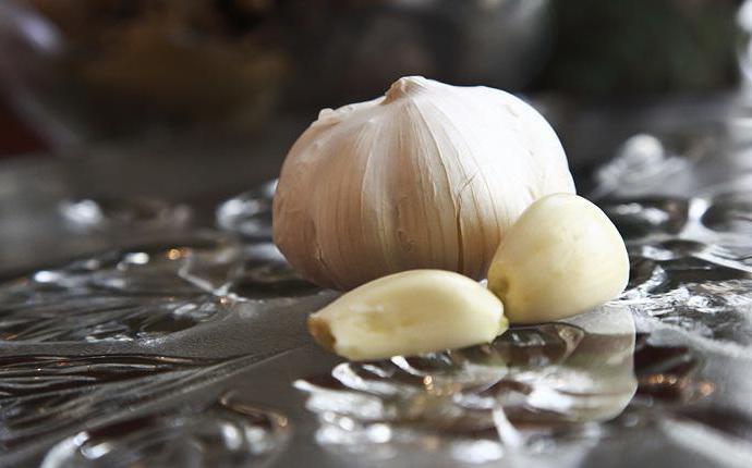 полезные свойства чеснока для организма человека при простуде