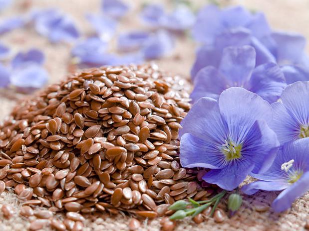 полезные свойства льняного семени и его применение