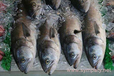 рыба польза и вред для организма